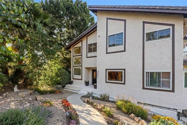 23641 Summit Drive, Calabasas, CA 91302 (#SR20095957) :: Coldwell Banker Millennium