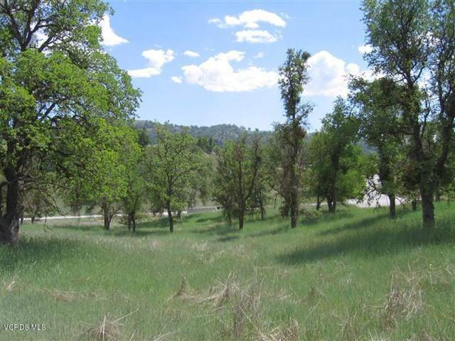 29100 Horsethief Drive Lot 152, Tehachapi, CA 93561 (#220005046) :: The DeBonis Team