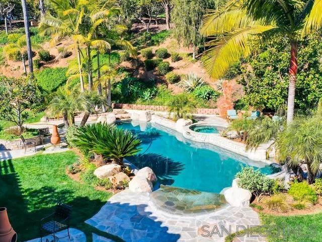 5354 El Camino Del Norte, Rancho Santa Fe, CA 92067 (#200022767) :: Coldwell Banker Millennium