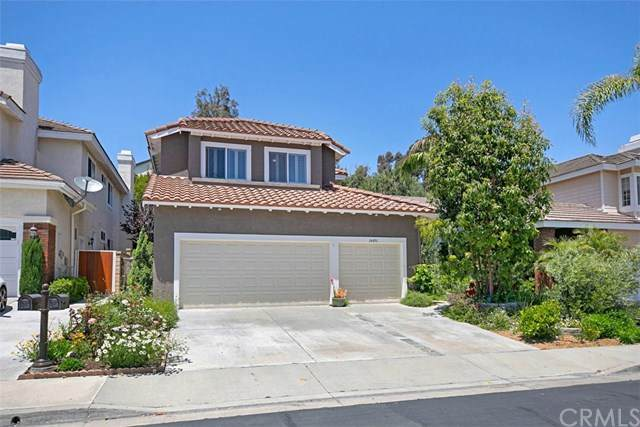 24891 Sea Aire, Dana Point, CA 92629 (#OC20095630) :: Sperry Residential Group
