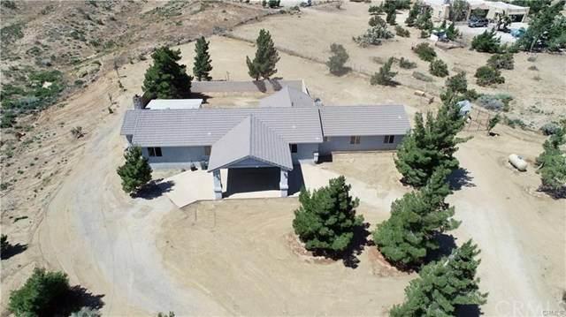 5165 Cygnet Road, Phelan, CA 92371 (MLS #EV20097608) :: Desert Area Homes For Sale
