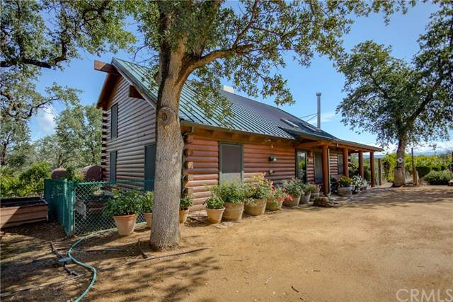 21490 Wildcat Road, Paynes Creek, CA 96075 (#SN20097628) :: Allison James Estates and Homes