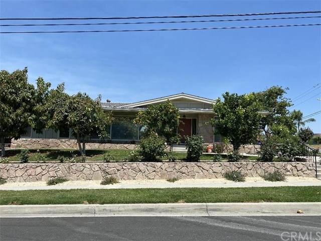 11481 Anderson Street, Loma Linda, CA 92354 (#EV20095395) :: Mark Nazzal Real Estate Group