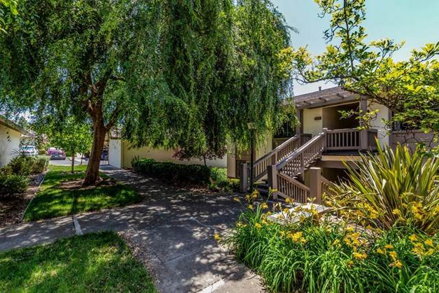 5220 Cribari, San Jose, CA 95135 (#ML81793560) :: Sperry Residential Group