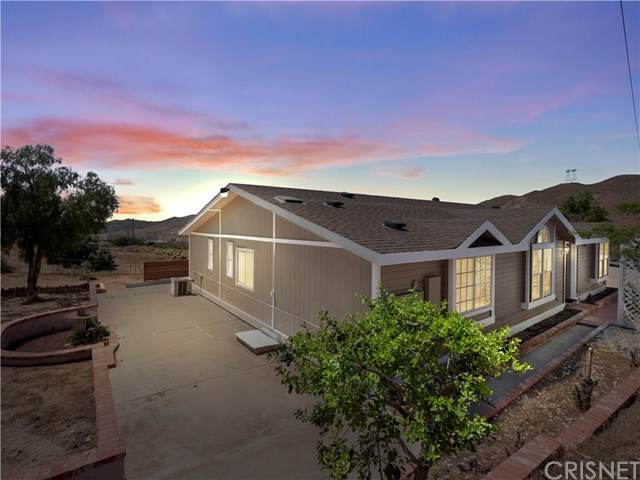 510 E Soledad Pass Road, Acton, CA 93550 (#SR20096718) :: Allison James Estates and Homes