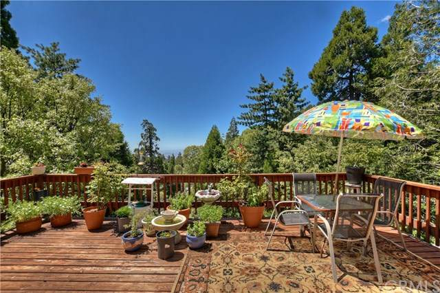 26581 Valley View Drive, Rimforest, CA 92378 (#EV20096944) :: Compass