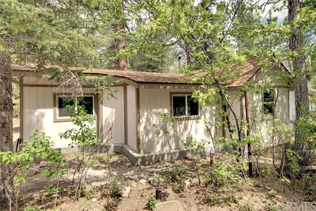 39219 Cedar Dell Road, Big Bear, CA 92333 (#PW20097171) :: The Costantino Group | Cal American Homes and Realty