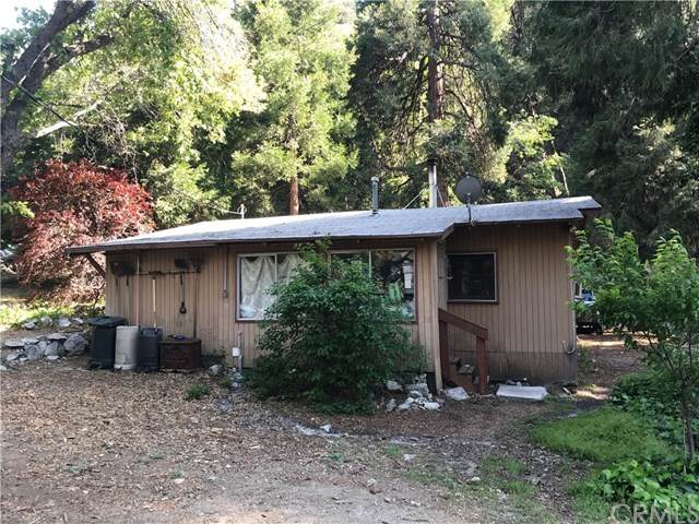 9181 Corral Road, Forest Falls, CA 92339 (#EV20098908) :: Coldwell Banker Millennium