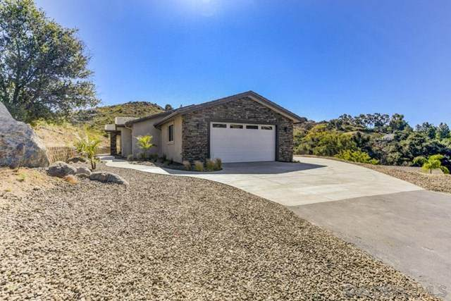 1995 Pine View Rd, Alpine, CA 91901 (#200023668) :: The Najar Group