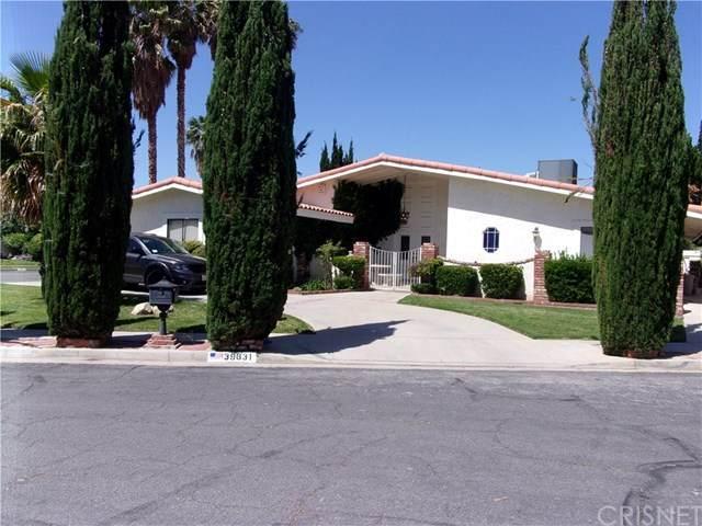 39631 Joline Avenue, Palmdale, CA 93551 (#SR20099235) :: Coldwell Banker Millennium