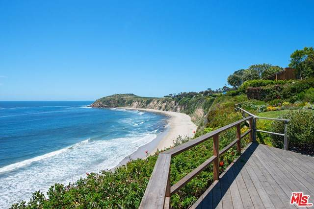 28946 Cliffside Drive, Malibu, CA 90265 (#20582404) :: Sperry Residential Group