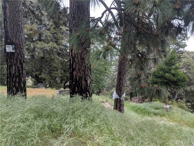 857 Mozumdar Drive, Cedarpines Park, CA 92322 (#EV20099498) :: Sperry Residential Group