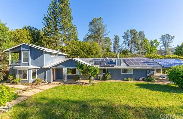 3882 Pinecrest Drive, Mariposa, CA 95338 (#MP20099649) :: Better Living SoCal