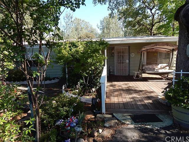 17 Hanging Tree Court, Oroville, CA 95966 (#OR20099721) :: Team Tami