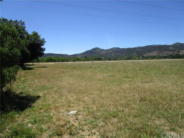 10950 Bachelor Valley Road, Upper Lake, CA 95485 (#LC20099948) :: Faye Bashar & Associates