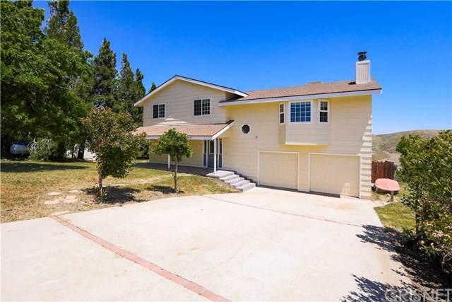 14647 Flintstone Drive, Lake Hughes, CA 93532 (#SR20099759) :: Allison James Estates and Homes