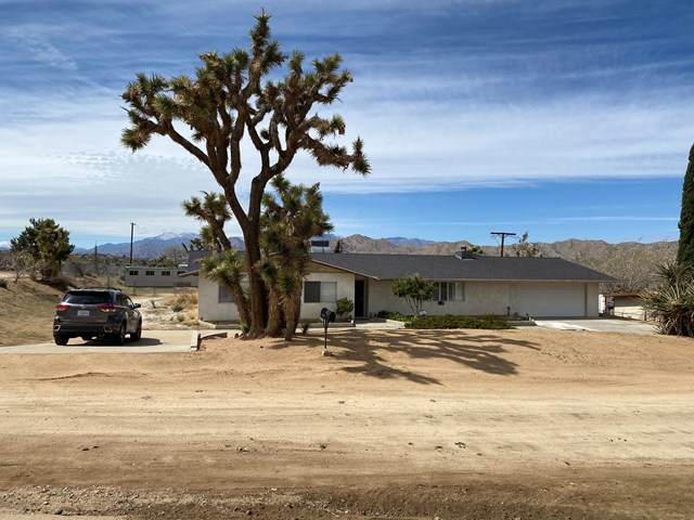 7886 Bannock Trail, Yucca Valley, CA 92284 (#219043498DA) :: Sperry Residential Group