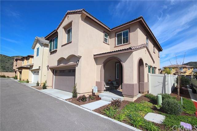 35462 Brown Galloway Lane, Fallbrook, CA 92028 (#SW20100256) :: The Costantino Group | Cal American Homes and Realty