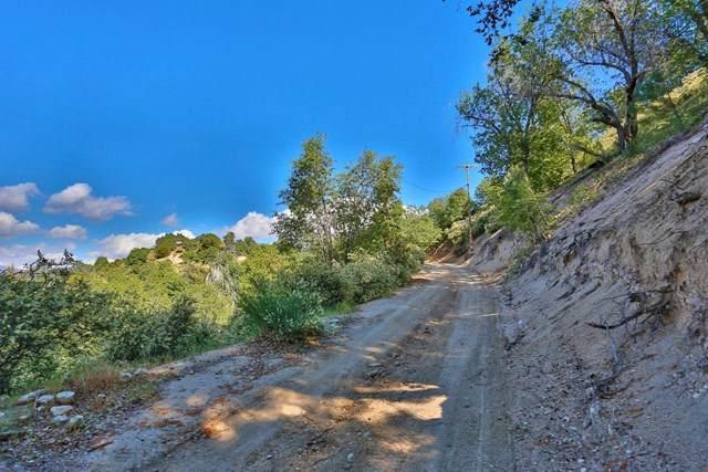 0 Hickory Drive - Photo 1