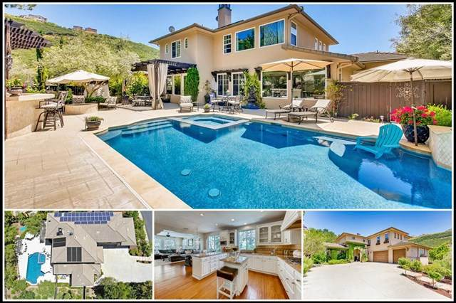 1441 Misty Sea Way, San Marcos, CA 92078 (#200023915) :: The Costantino Group | Cal American Homes and Realty