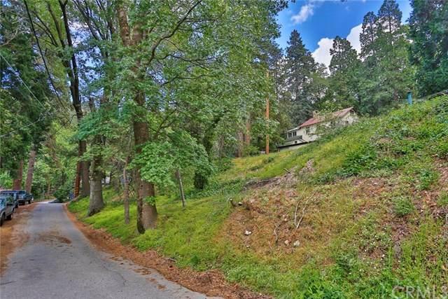 0 Acacia Road, Cedar Glen, CA 92321 (#OC20100472) :: The Brad Korb Real Estate Group