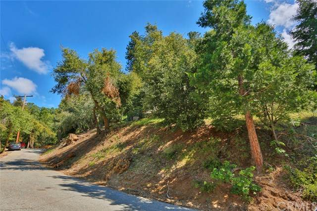 0 Ashlar, Crestline, CA 92325 (#OC20100493) :: Z Team OC Real Estate