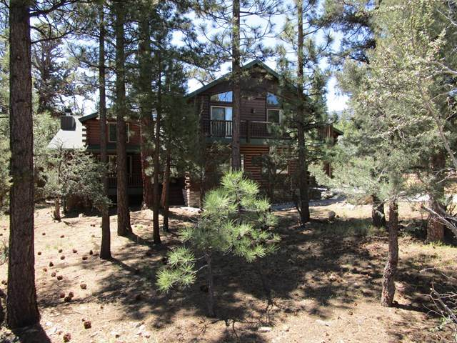 1010 Heritage Trail, Big Bear, CA 92314 (#219043510PS) :: Legacy 15 Real Estate Brokers