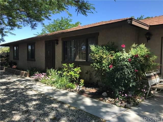 10619 E Avenue R4, Littlerock, CA 93543 (#SR20100649) :: Provident Real Estate