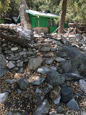 7 Ice House, Mount Baldy, CA 91759 (#CV20100746) :: Team Tami