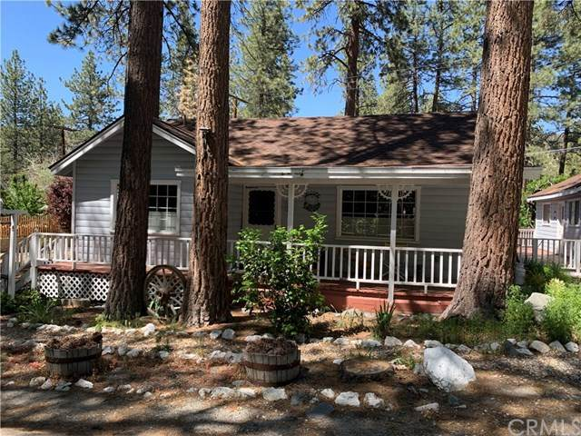 1055 Robin Lane, Wrightwood, CA 92397 (#IV20100117) :: The Costantino Group | Cal American Homes and Realty