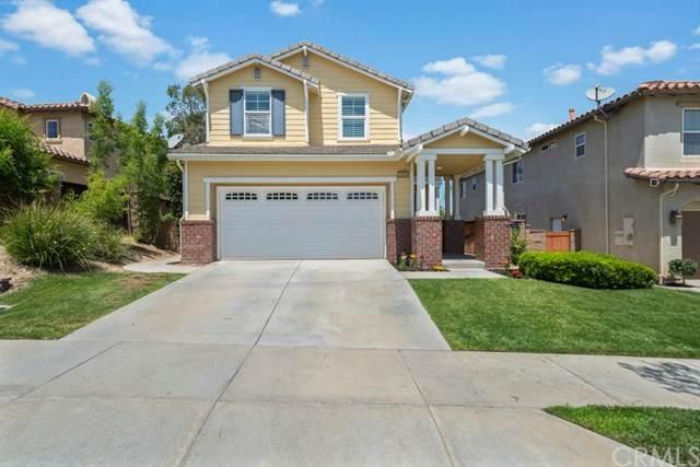 24983 Catkin Street, Corona, CA 92883 (#CV20099578) :: Z Team OC Real Estate