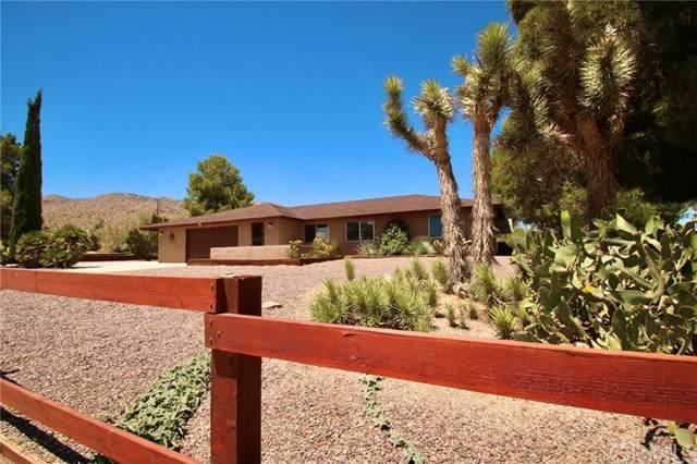 61548 Navajo, Joshua Tree, CA 92252 (#JT20101087) :: Z Team OC Real Estate