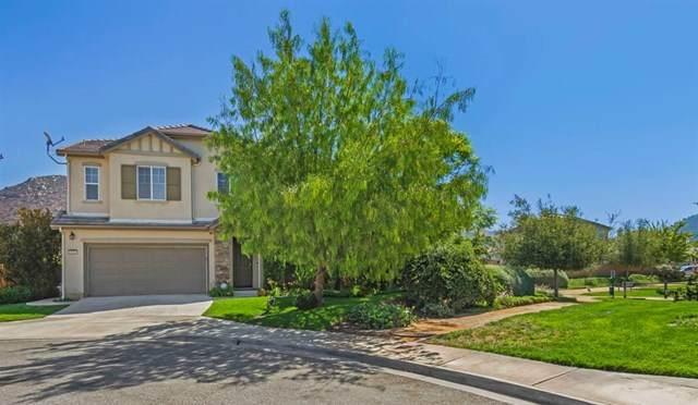 4009 Lake Shore Lane, Fallbrook, CA 92028 (#200024224) :: The Costantino Group | Cal American Homes and Realty
