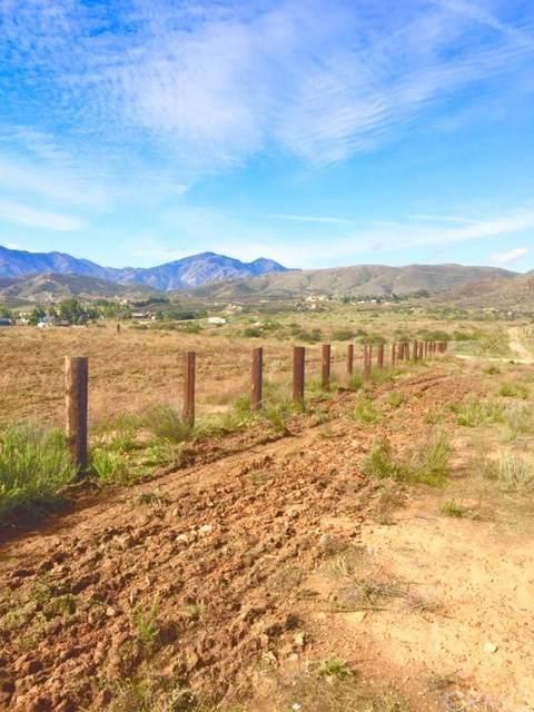 37880 Ritas Lane, Perris, CA  (#SW20102625) :: American Real Estate List & Sell