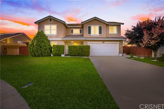 3817 Park Vista Court, Rosamond, CA 93560 (#SR20102718) :: RE/MAX Empire Properties