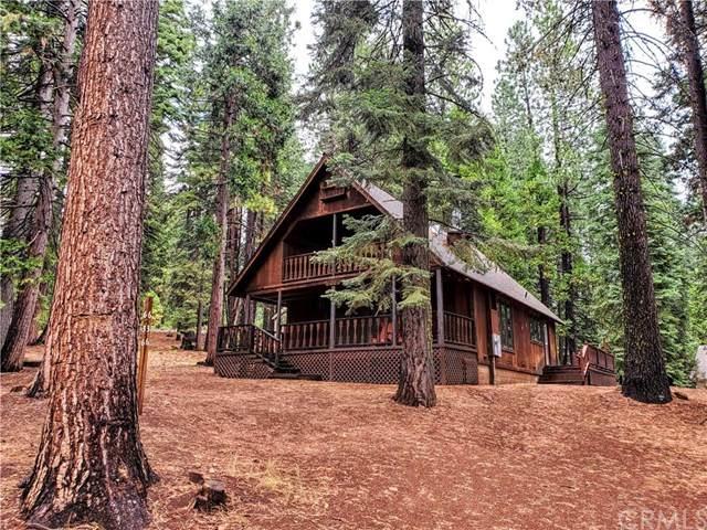 636 W Burnt Cedar Road, Lake Almanor, CA 96137 (#SN20100972) :: Allison James Estates and Homes