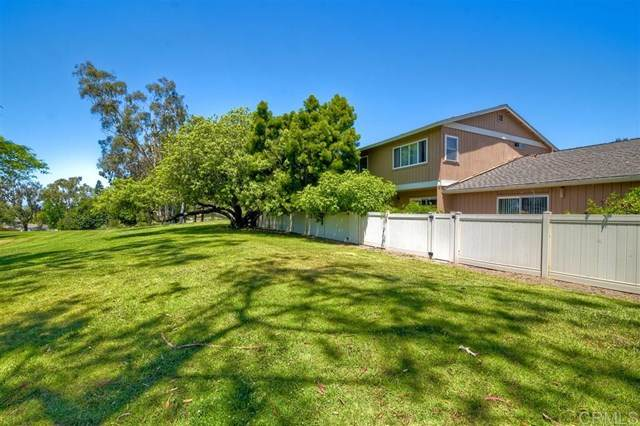 2019 Willowood Ln, Encinitas, CA 92024 (#200024537) :: The Costantino Group | Cal American Homes and Realty