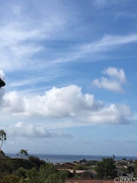 1645 Harbor Crest Circle, Corona Del Mar, CA 92625 (#NP20103159) :: Legacy 15 Real Estate Brokers