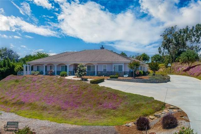1771 Camino De Nog, Fallbrook, CA 92028 (#200024594) :: The Costantino Group | Cal American Homes and Realty