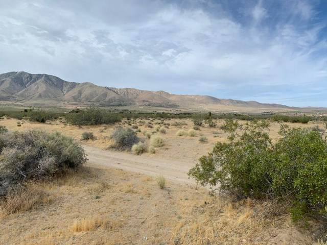 0 Miller Ranch Road - Photo 1