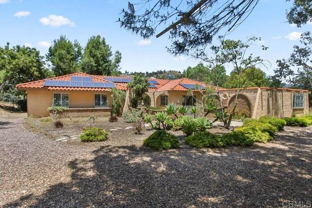 13696 Indian Springs Dr, Jamul, CA 91935 (#200024677) :: Laughton Team | My Home Group