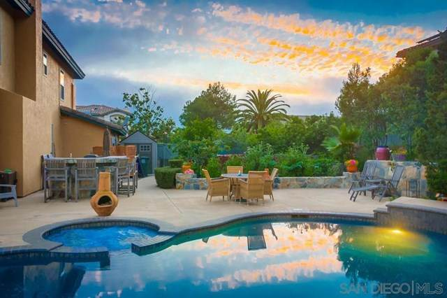 16649 Granite Dr, Ramona, CA 92065 (#200024689) :: The Costantino Group   Cal American Homes and Realty