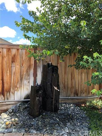 3222 Sespe Creek Way, Chico, CA 95973 (#SN20103339) :: Twiss Realty