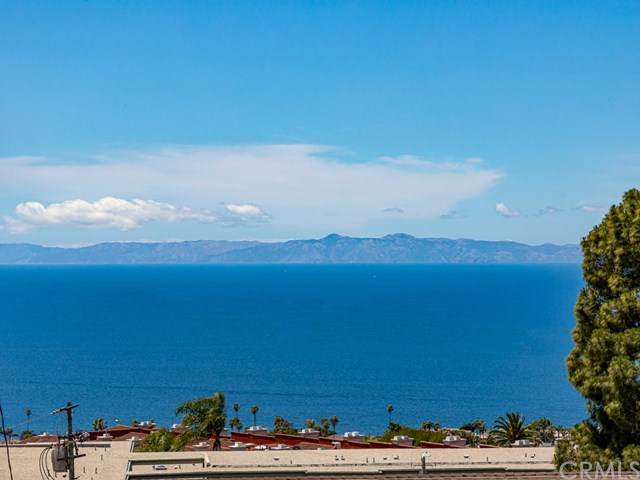 2227 Baleria Drive, San Pedro, CA 90732 (#PV20103591) :: The Najar Group