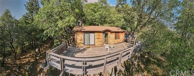 6451 Spruce Avenue, Angelus Oaks, CA 92305 (#EV20103608) :: A G Amaya Group Real Estate