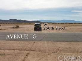 0 250th Street E. - Photo 1