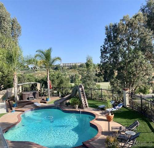 43104 Agena Street, Temecula, CA 92592 (#200024819) :: The DeBonis Team