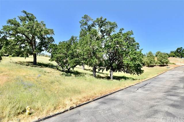 9923 Flyrod Drive, Paso Robles, CA 93446 (#NS20072625) :: Mark Nazzal Real Estate Group