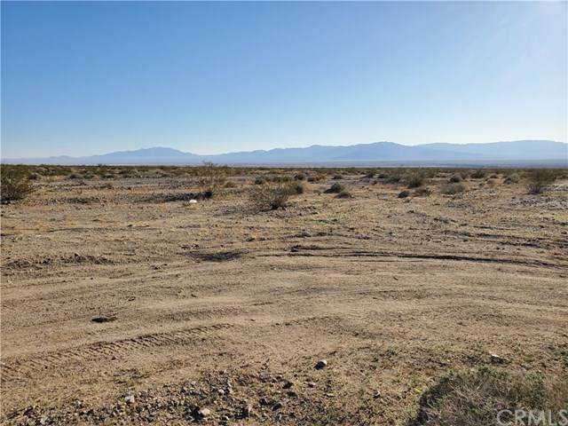 0 Hwy 66, Amboy, CA 92304 (MLS #WS20104083) :: Desert Area Homes For Sale