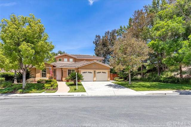 41602 Laurel Valley Circle, Temecula, CA 92591 (#SW20093920) :: RE/MAX Empire Properties